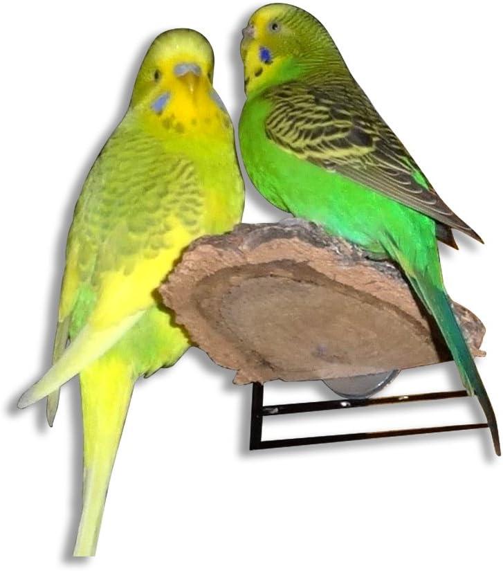 Pack of 3 Vogelgaleria Cork Perches for Bird Cage