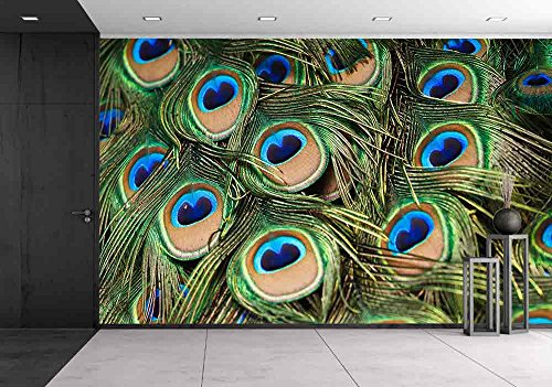 Cheap  wall26 - Beautiful Vivid Peacock Feathers - Removable Wall Mural | Self-adhesive..