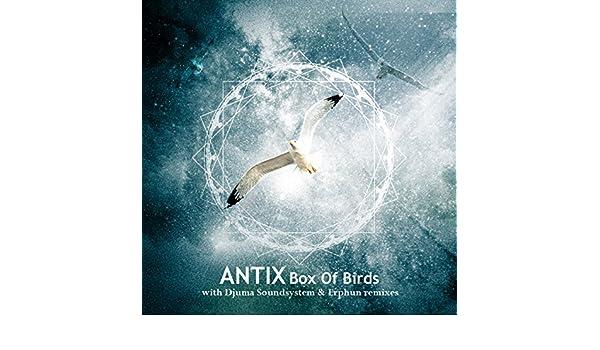 antix box of birds