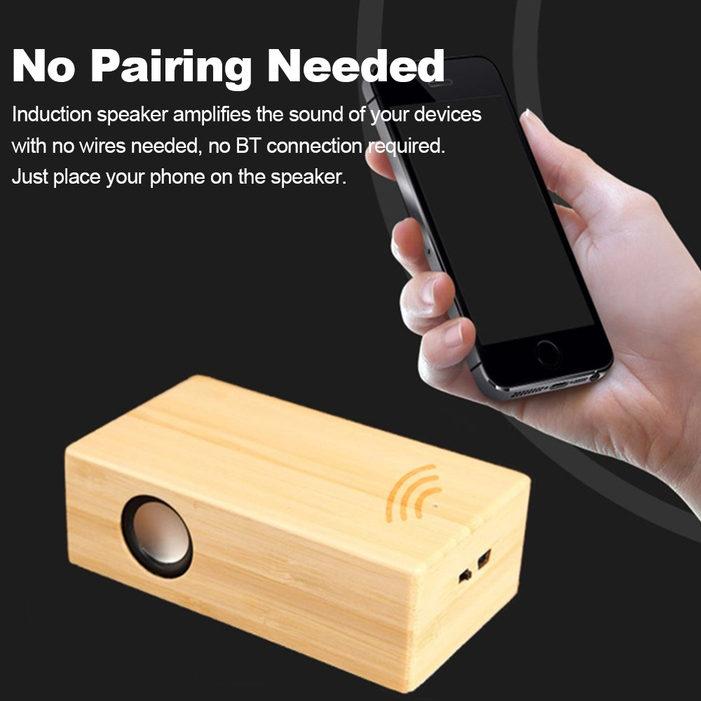 Walmeck Induction Speaker Wooden Automatic Sensing Nz Wiring Code Colours Electronics