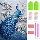 Ispeedytech 5D Diamond Painting DIY Peacock Arts Craft Painting 18''X29.5'' by-Number Kits Cross Stitch for Home Decoration with Tool Set