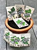 Herb Seeds SillySeed Collection - Over 3500