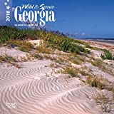 Georgia, Wild & Scenic 2018 7 x 7 Inch Monthly Mini Wall Calendar, USA United States of America Southeast State Nature