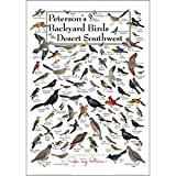 Earth Sky & Water Poster - Peterson's Backyard Birds of the Desert Southwest