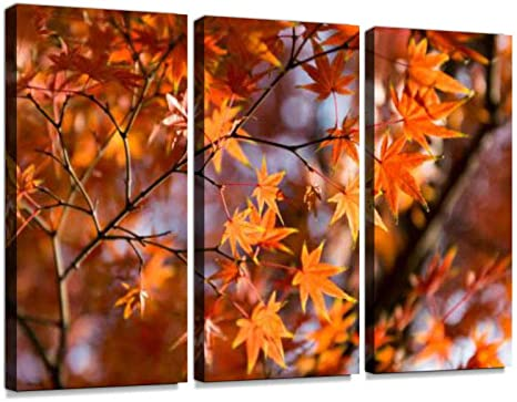 Amazon Com Maple Leaves Print On Canvas Wall Artwork Modern Photography Home Decor Unique Pattern Stretched And Framed 3 Piece With Frame Posters Prints