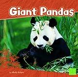 Giant Pandas, Molly Kolpin, 1429671858