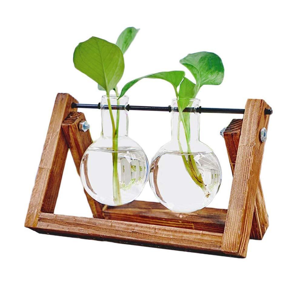 Plant Terrarium Wooden Stand, Desktop Glass Planter Bulb Vase with Retro Solid Wooden Stand and Metal Swivel Holder for Hydroponics Plants Home Garden Office Wedding Decor 2 Bottle