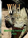 Wild Venezuela - Morrocoy National Park