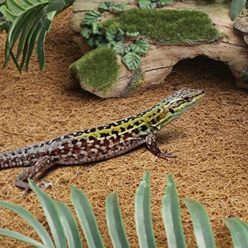 POPETPOP Alfombra de Reptil Fibra de Coco Reptiles Ropa de Cama Alfombra de Escalada para Lagarto Camaleón Serpiente Tortuga Dragón Barbudo Iguana Cama - 60x40cm: Amazon.es: Productos para mascotas