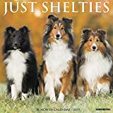 Just Shelties 2019 Wall Calendar (Dog Breed Calendar)
