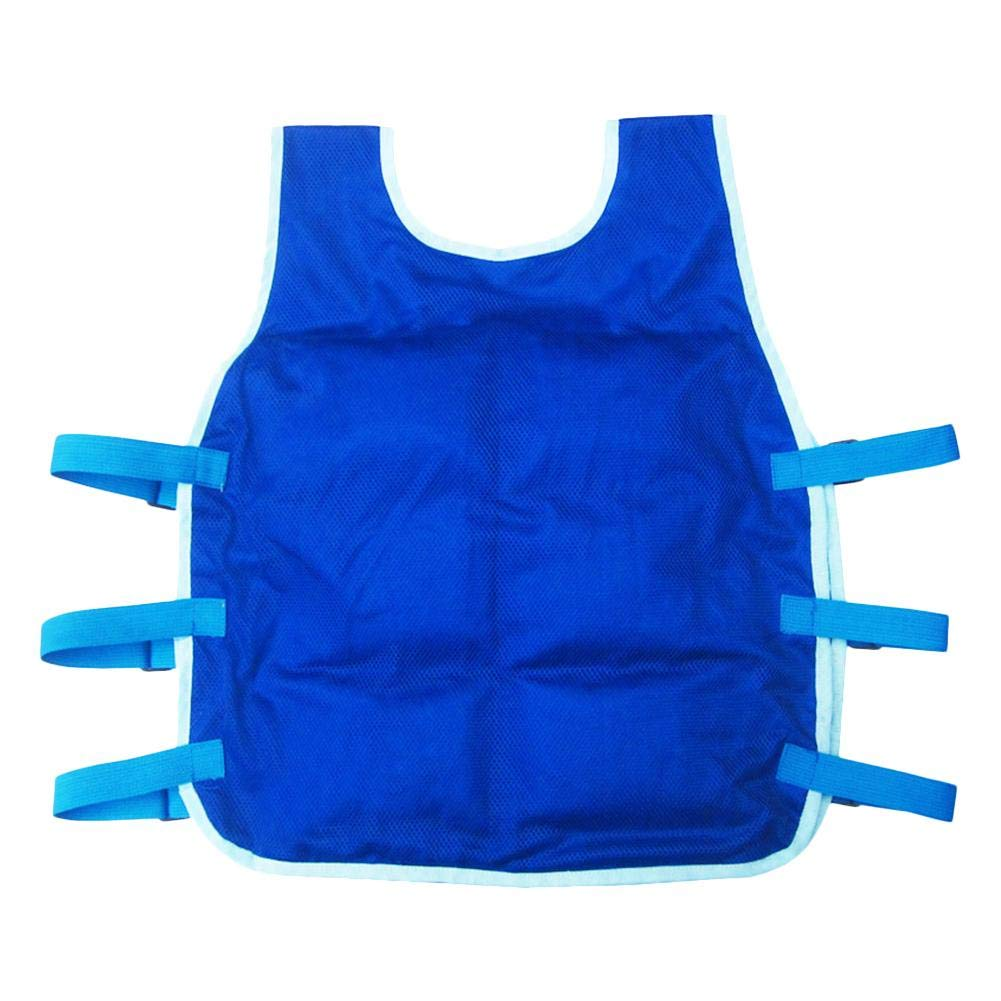 blue--net Summer Cooling Vest with 24PCS Ice Packs and 2 Insulated Bag, Summer ICY Cooling Vest Heat Resistant Apron for Men and Women, Outdoor Sports Cool Vest for Fishing,Cycling,Running,Cooking
