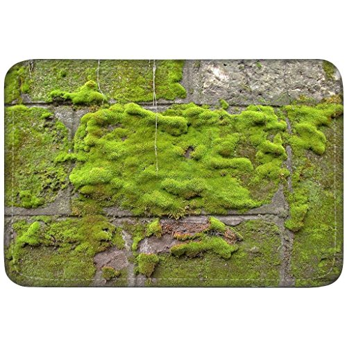 Top 10 recommendation living moss bath mat for 2019