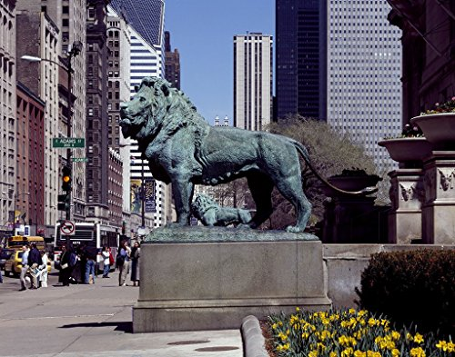 Chicago, IL Photo - Edward Kemeys' guardian lions stand before the Art Institute of Chicago, Illinois - Carol Highsmith