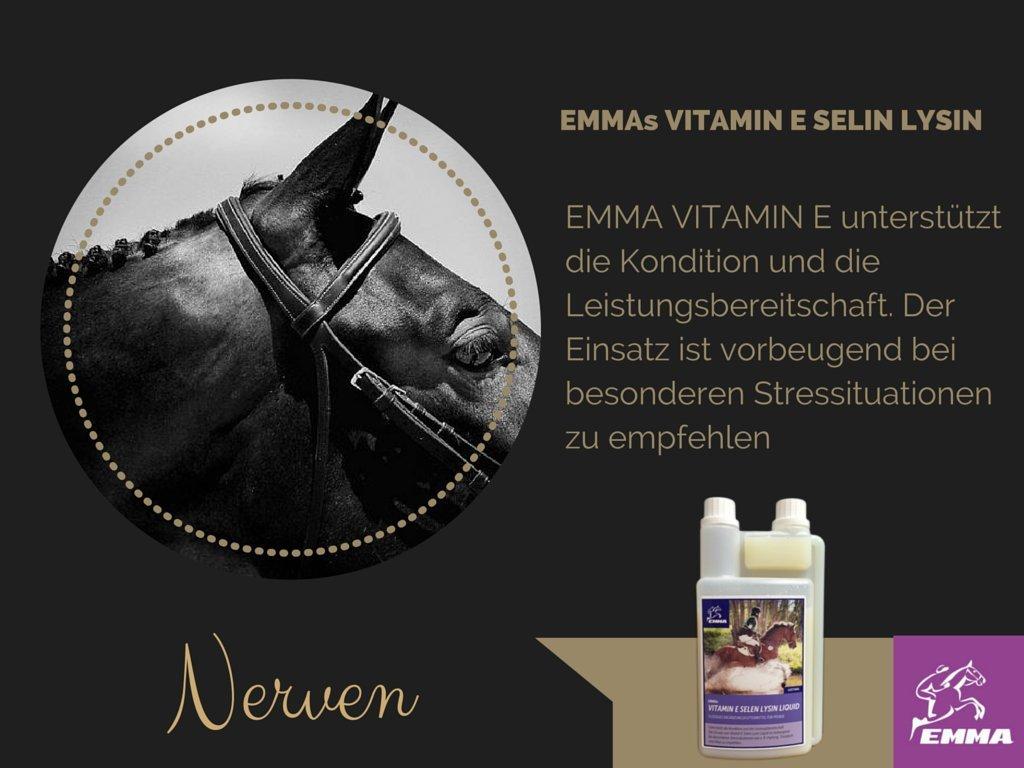 EMMA Magnésium Vitamine B12pour Forte de Nerfs en Ligne 1L pferdefuttershop. de