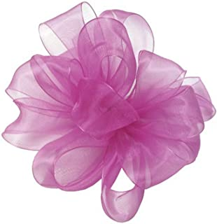 "product image for Offray Berwick LLC 424278 Berwick Simply Sheer Asiana Ribbon - 5/8"" W X 25 yd - Shocking Pink Ribbon"