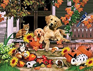 product image for SUNSOUT INC Autumn on The Porch 300 pc Jigsaw Puzzle
