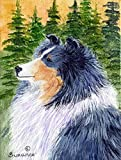 Caroline's Treasures SS8142CHF Sheltie Flag Canvas, Large, Multicolor