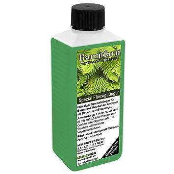 Cyatheales Árbol de Helechos fertilizante líquido alta tecnología NPK, raíz, suelo, Foliar –
