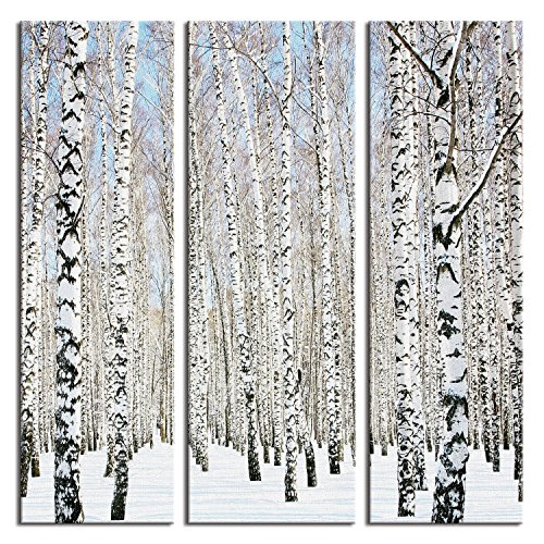 JP London 16in by 48in Triptych 3 Huge Panels Gallery Wrap Canvas Wall Art Winter Birch Forest Trees at Overall 4 feet LTCNV2341, Extra Large