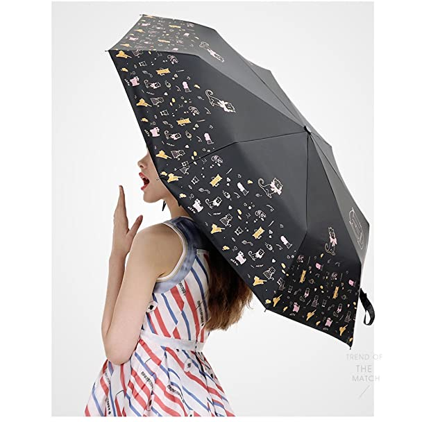 Amazon.com : Cute Cat Umbrella Rain Women Folding Umbrellas Female Sunny Sunscreen Parasol Lovely Paraguas Anti UV (Black) : Sports & Outdoors