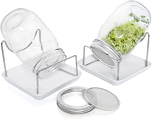 Rocinha Seed Sprouting Jar Kit, 2 Wide Mouth Sprouting Jars with Screen Lids Stands and Trays, Seed Germination Kit for Growing Broccoli, Alfalfa, and Bean Sprouts