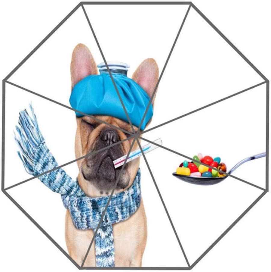 LLHJ Paraguas Perro Animal Diseño de Paraguas Personalizado Moda portátil Moda Paraguas útil Buen RegaloChocolate