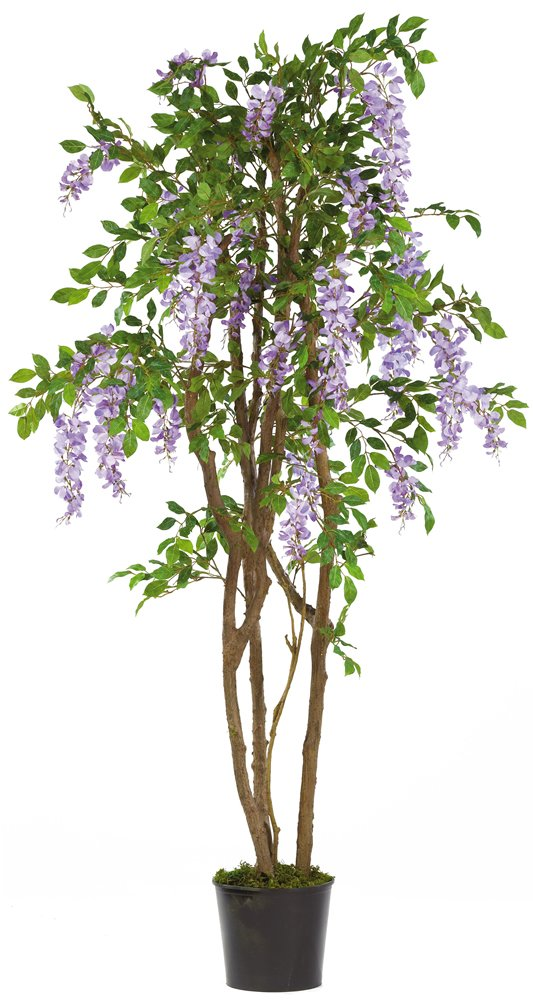 Nearly Natural 5015-PP Wisteria Silk Tree, 5-Feet, Purple NR-DSD-541172