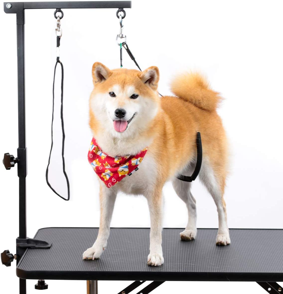 Breeze Touch Dog Grooming Table Arm - Loop Noose, No Sit Haunch Holder Grooming Restraint for Small & Medium Dogs