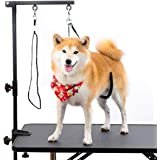"""Breeze Touch Dog Grooming Table Arm - 35"""" Dog Grooming Stand with Clamp and Post, Loop Noose, No Sit Haunch Holder…"""