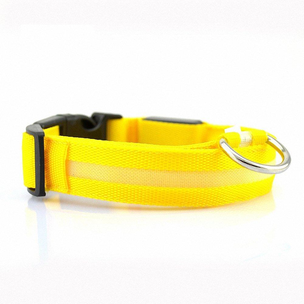 G-Hawk Collar LED para perros, Rechargeable y banda para el cuello ...