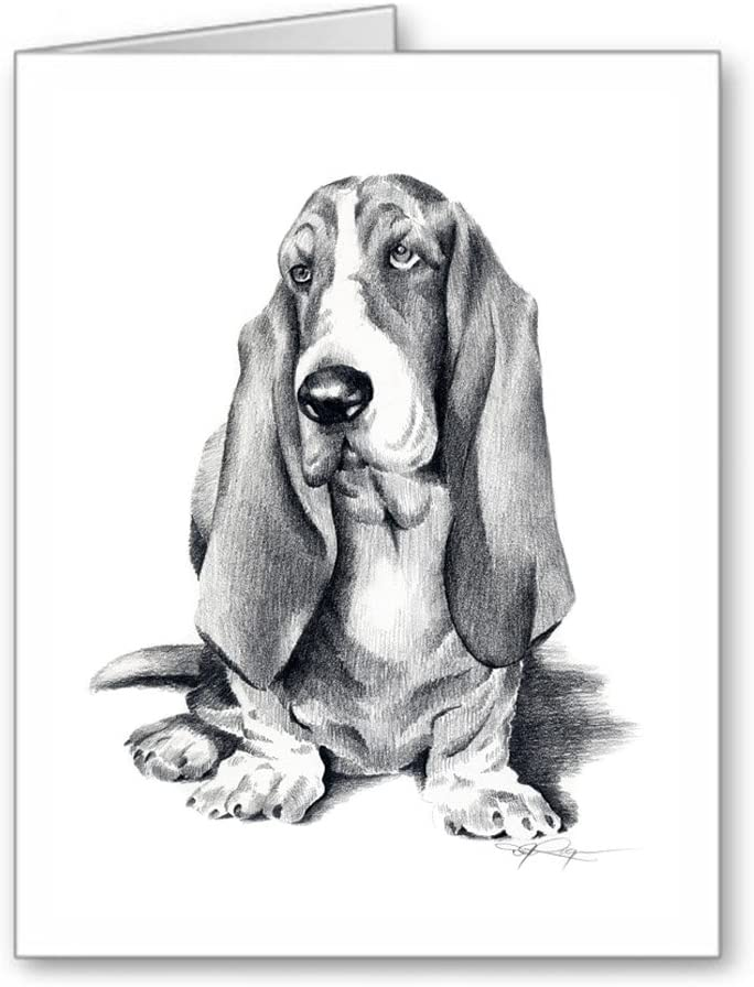 Dog Art Greeting Card Stationary with Envelopes and Display Box. set of 6 Basset Hound Pair Note Cards Blank Inside