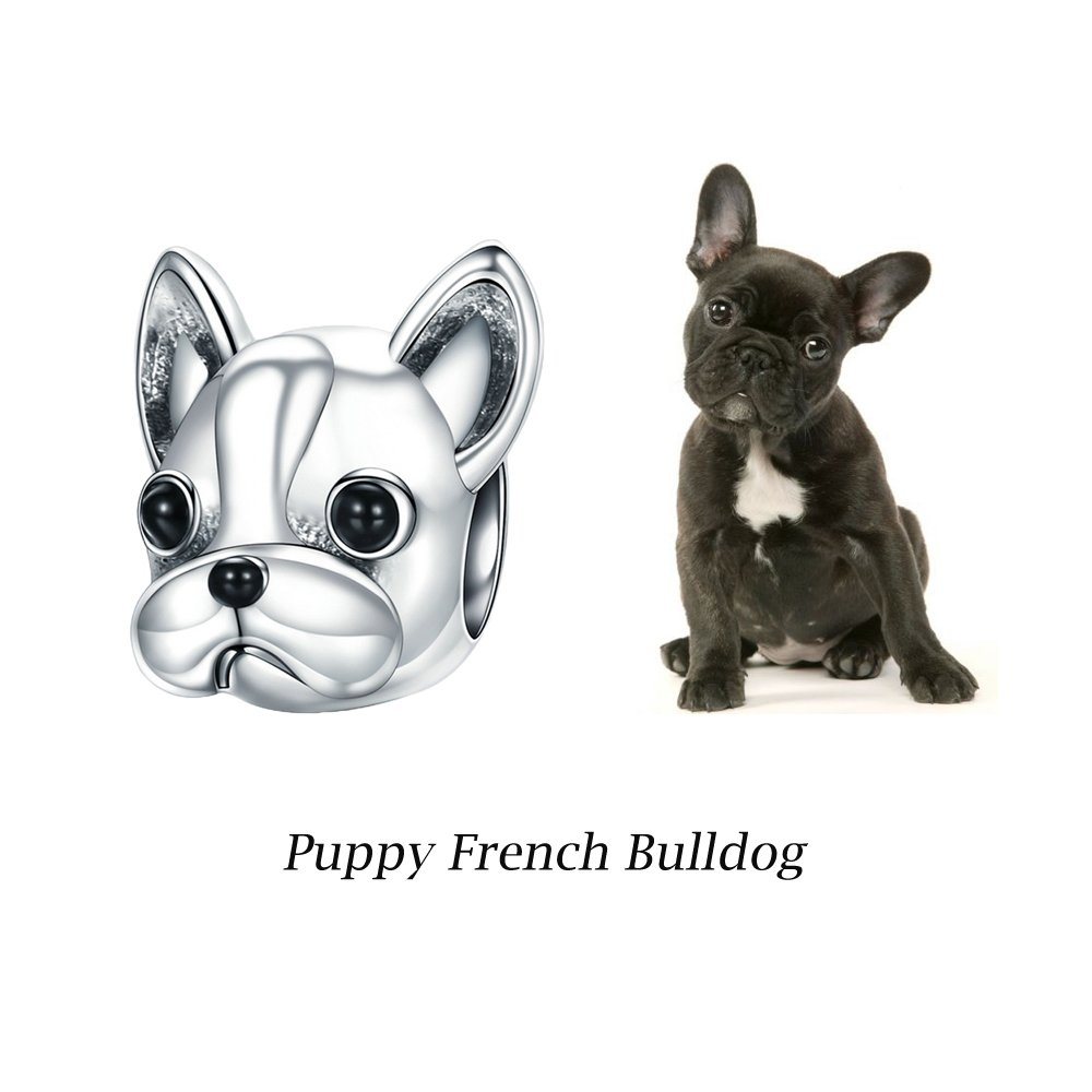5ecea086610 Amazon.com: 925 Sterling Silver French Bulldog Charm Cute Pet Dog Animal  Charms fit for Pandora Bracelets, Birthday Anniversary Gifts for Her Teen  Girls ...