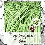 Long Bean Seeds - Yardlong Bean - Asparagus Bean
