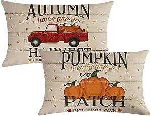 7COLORROOM Set of 2 Pumpkin Throw Pillow Covers Retro Red Truck Autumn Harvest Rectangular/Waist Cushion Cover Farmhouse Decorative Cotton Linen Pillowcases 12 x 20 Inches(Pumpkin 2)