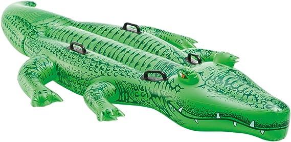 "Amazon.com: Intex Giant Gator Ride-On, 80"" X 45"" ..."