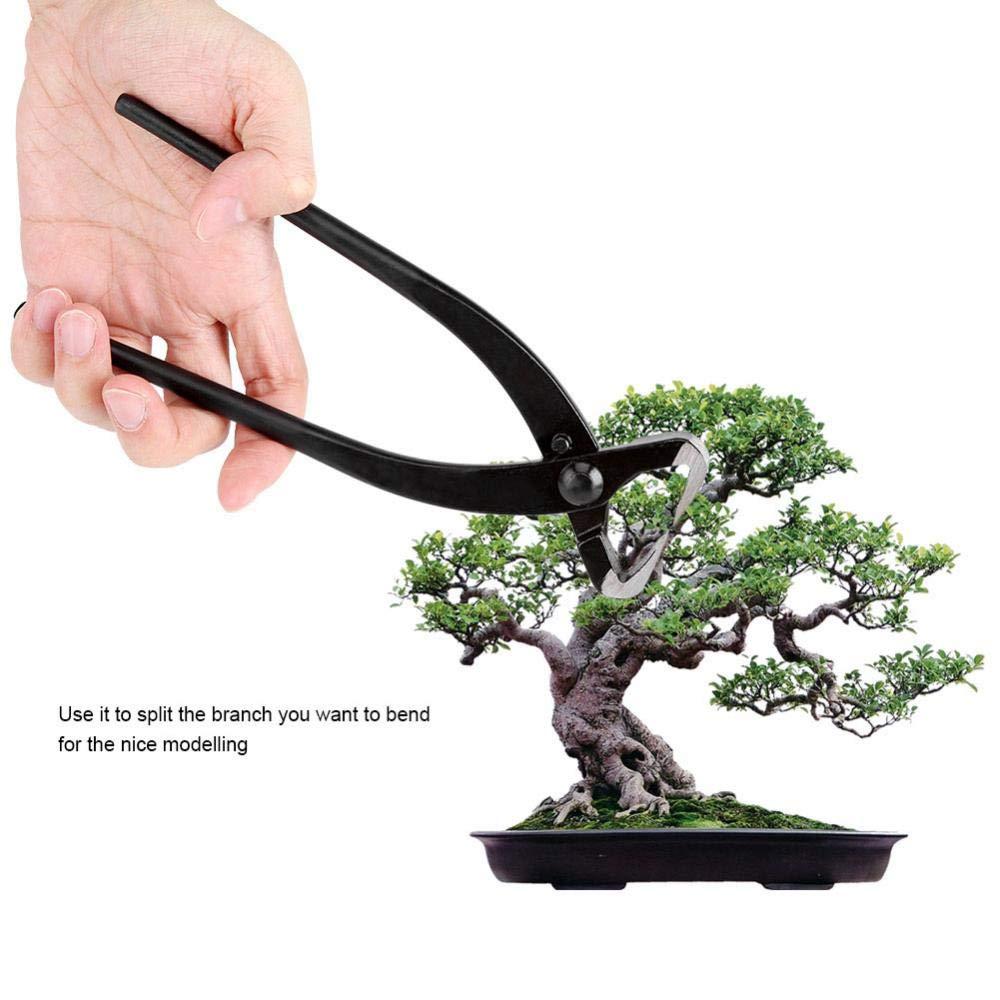 Sugoyi Bonsai-Werkzeug Manganstahl-Legierungs-Stamm-Teiler mit ergonomischem Griff-Gartenarbeit-Bonsai-Werkzeugen