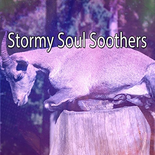 Soul Soother - Stormy Soul Soothers