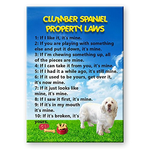 (Clumber Spaniel Property Laws Fridge Magnet )