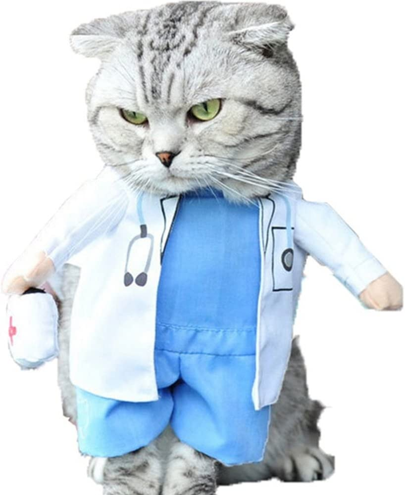 A cat wearing a doctor costume