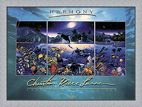 Harmony [foil] by Christian Lassen Framed Art Print Wall Picture, Flat Silver Frame, 39 x 30 inches by Great Art Now