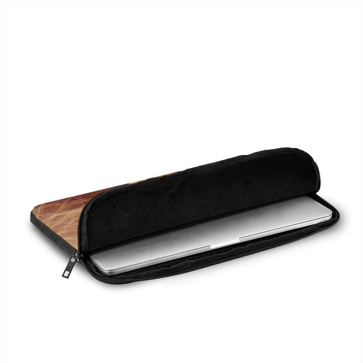 Compatible with Briefcase Tablet Case Black 12 Inch Aoligei La-Na Del-Rey 3D Printing Laptop Case