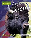 img - for American Bison: A Scary Prediction (America's Animal Comebacks) book / textbook / text book