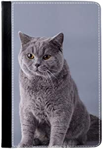 Have Shorthair Cat Full Body Covers Hipster Boys Compatible With New Ipad Or Ipad 2 3 4 Choose Design 97-5