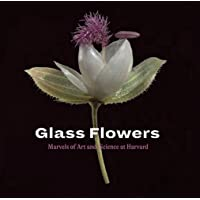 Glass Flowers: Marvels of Art and Science at