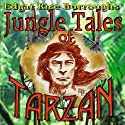 Jungle Tales of Tarzan Audiobook by Edgar Rice Burroughs Narrated by David Stifel