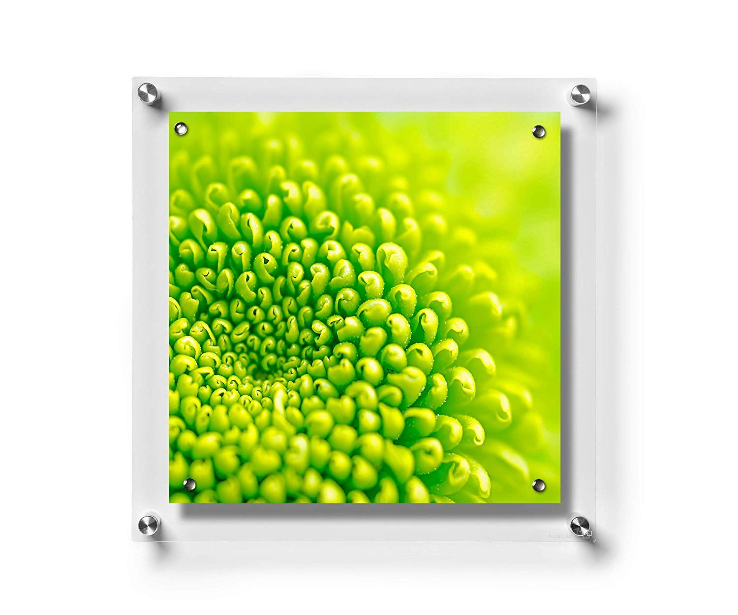 Wexel Art 23x23-Inch Big Square Magnetic Single Panel Framing Grade Acrylic Floating Frame with Silver Hardware for 20x20-Inch Art & Photos