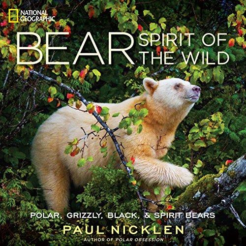 (Bear: Spirit of the Wild)