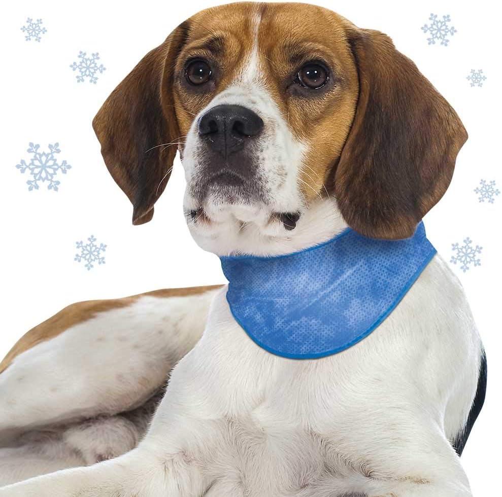 Schecker - Collar refrigerante para Perros, Color Azul, con ...