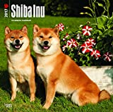 Shiba Inu Wall Calendar Dogs 2018 {jg} Best Holiday Gift Ideas - Great for mom, dad, sister, brother, grandparents, , grandchildren, grandma, gay, lgbtq.