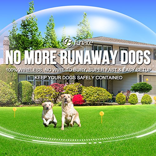 FunAce 100% Rechargeable Wireless Dog Fence System - Rechargeable & Portable Transmitter (2500 mAH)...